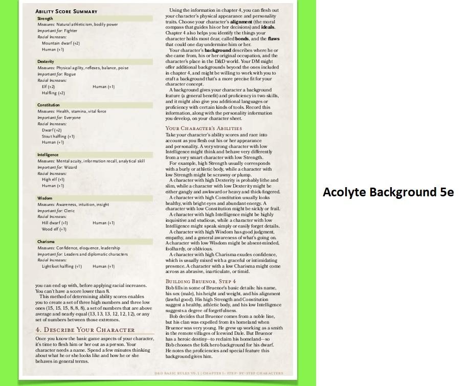 Acolyte Background 5e