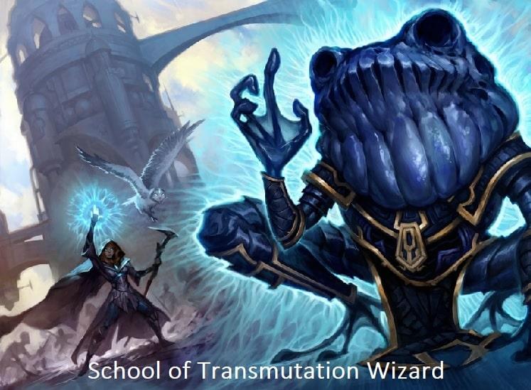 School of Transmutation wizard